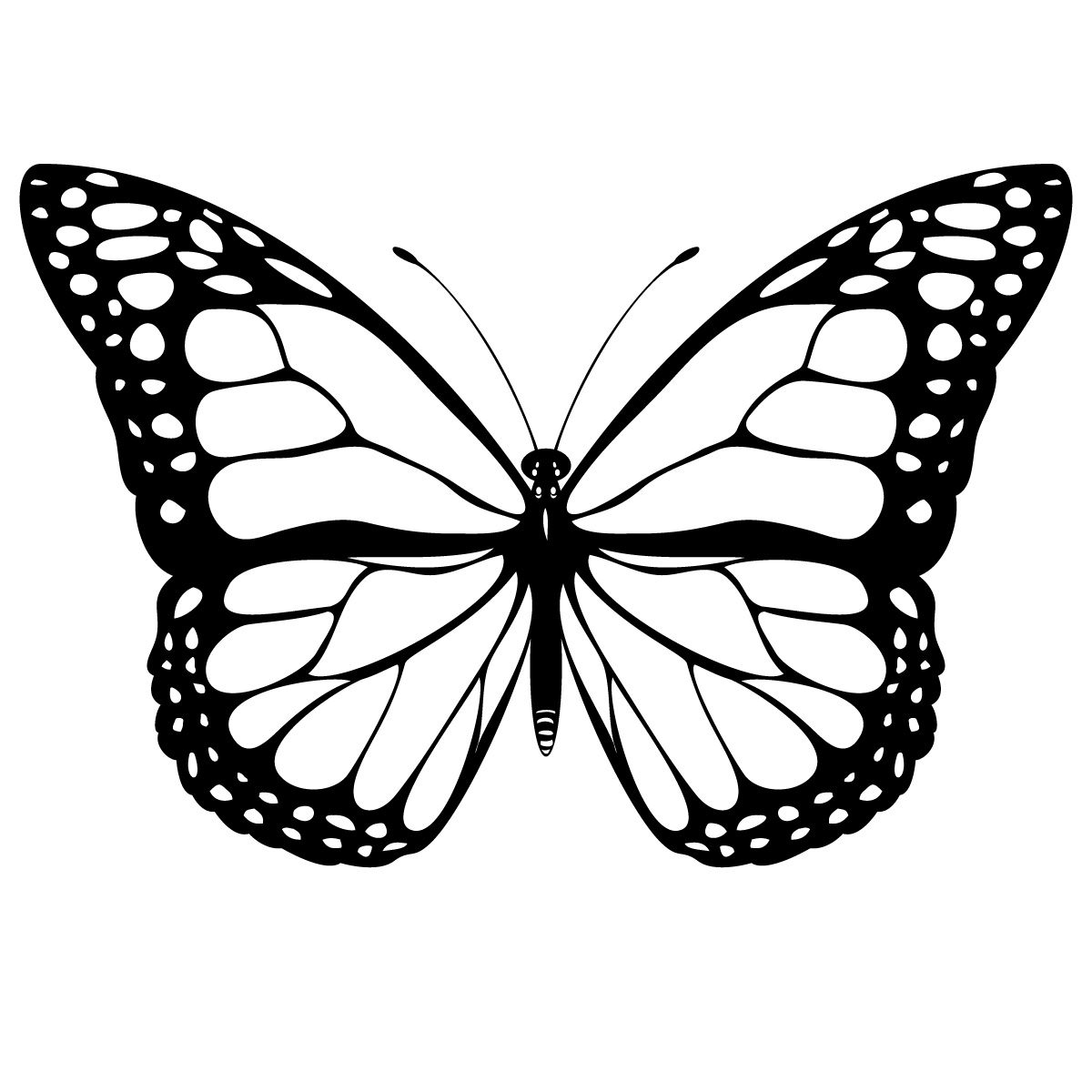 Real butterfly coloring pages - Dr Odd