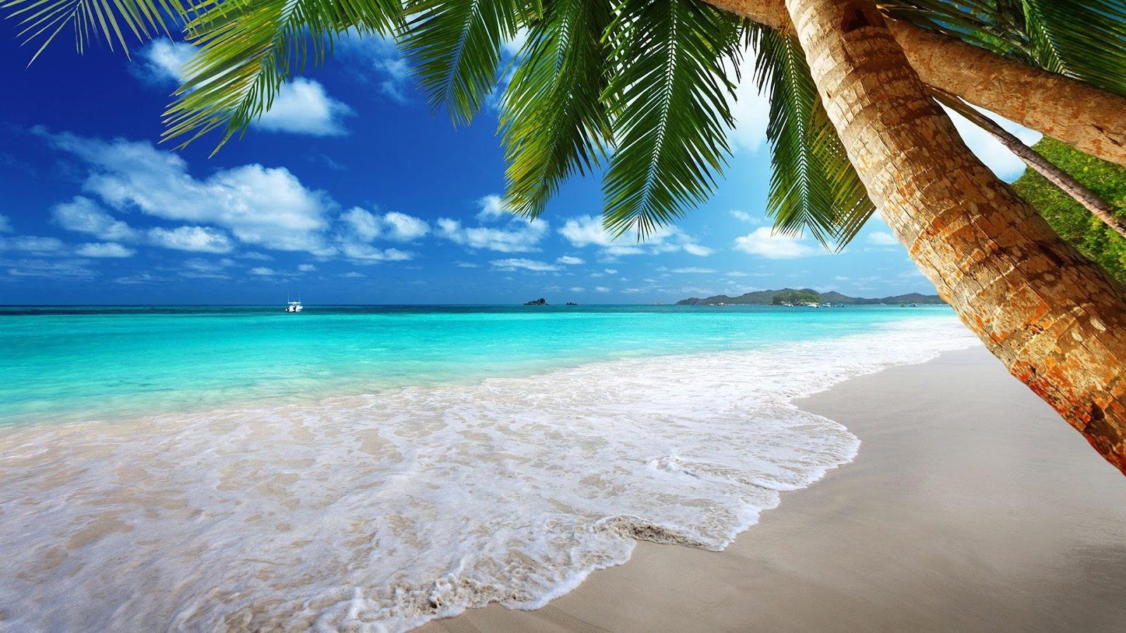 beach screensavers | best wallpapers hd gallery