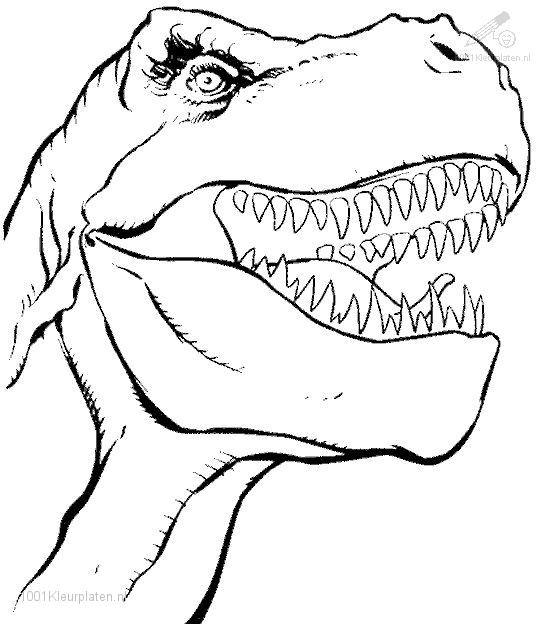 dinsaur coloring pages - photo#24