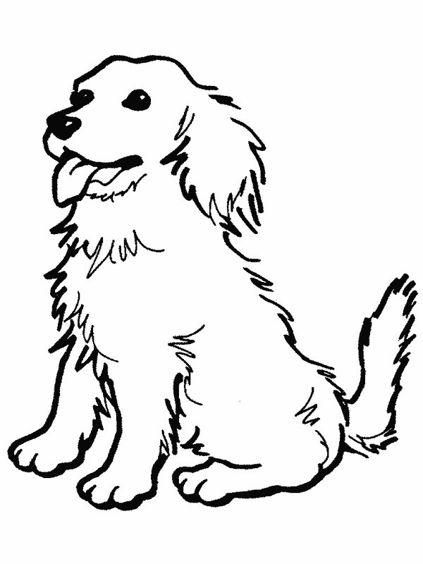 Dog Coloring Pages 2017 Dr Odd Color Pages Dogs