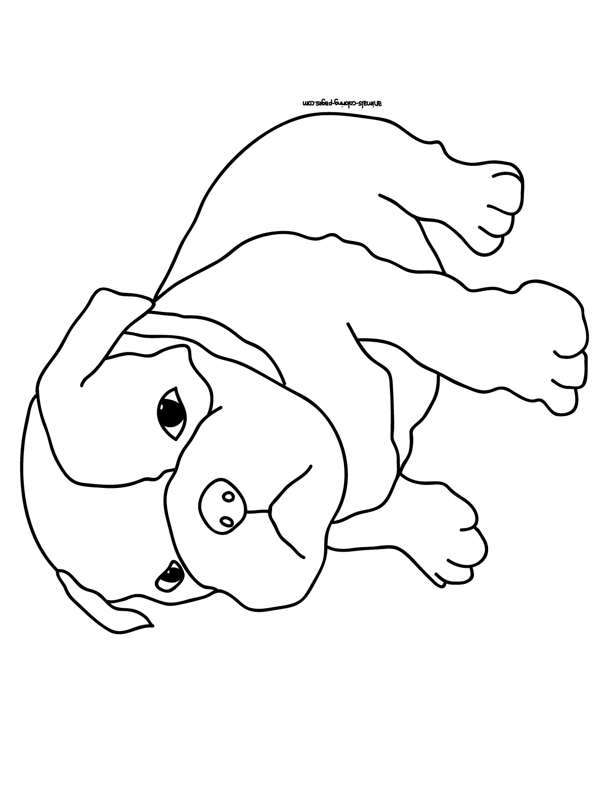 dog images to color