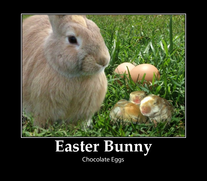 Funny Easter Pictures 2018 Dr Odd
