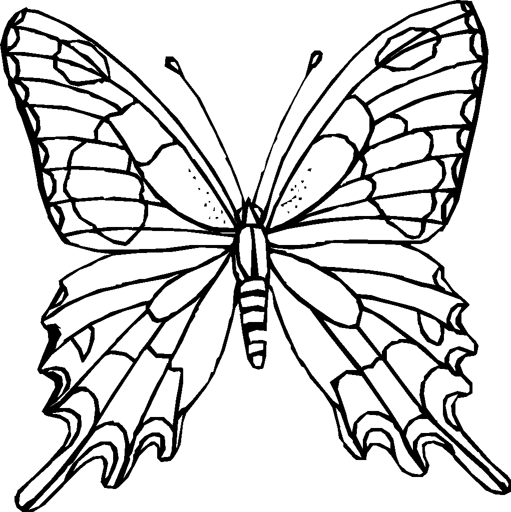 coloring pages of a butterfly - photo#28