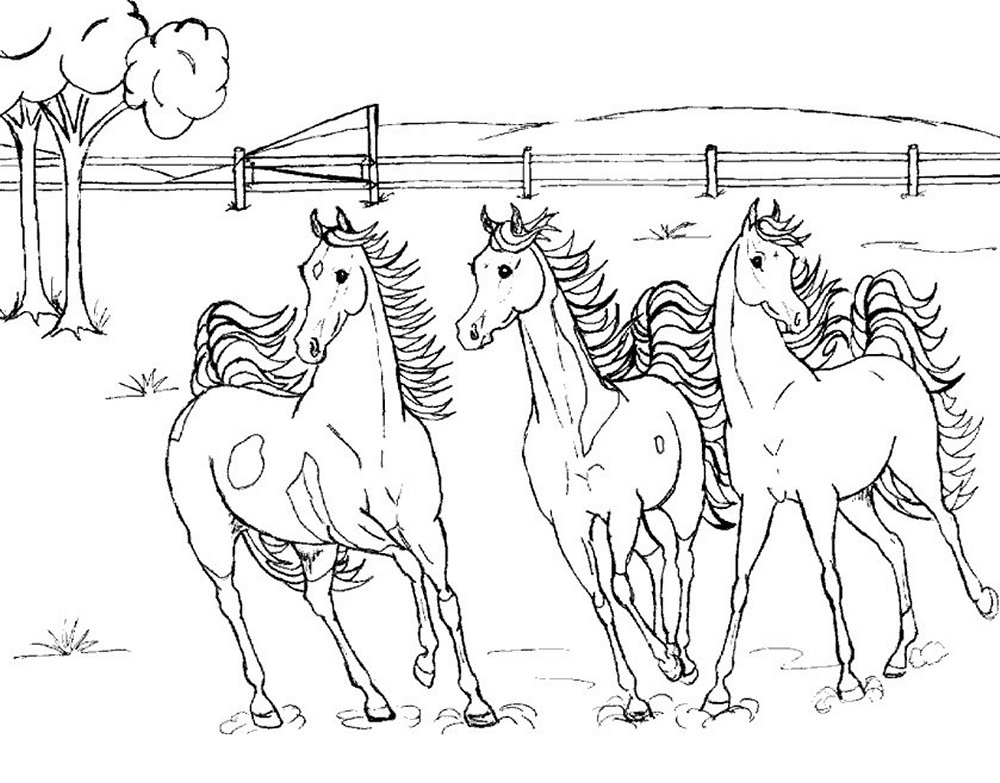 Mom And Baby Horse Coloring Pages  Coloring Pages
