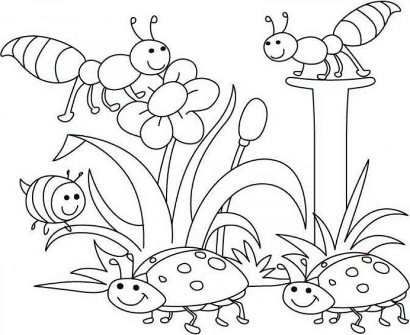 Free Coloring Pages For Preschoolers Spring : Spring coloring pages dr odd