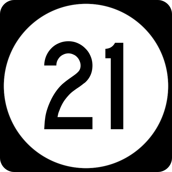Image result for pic of number 21