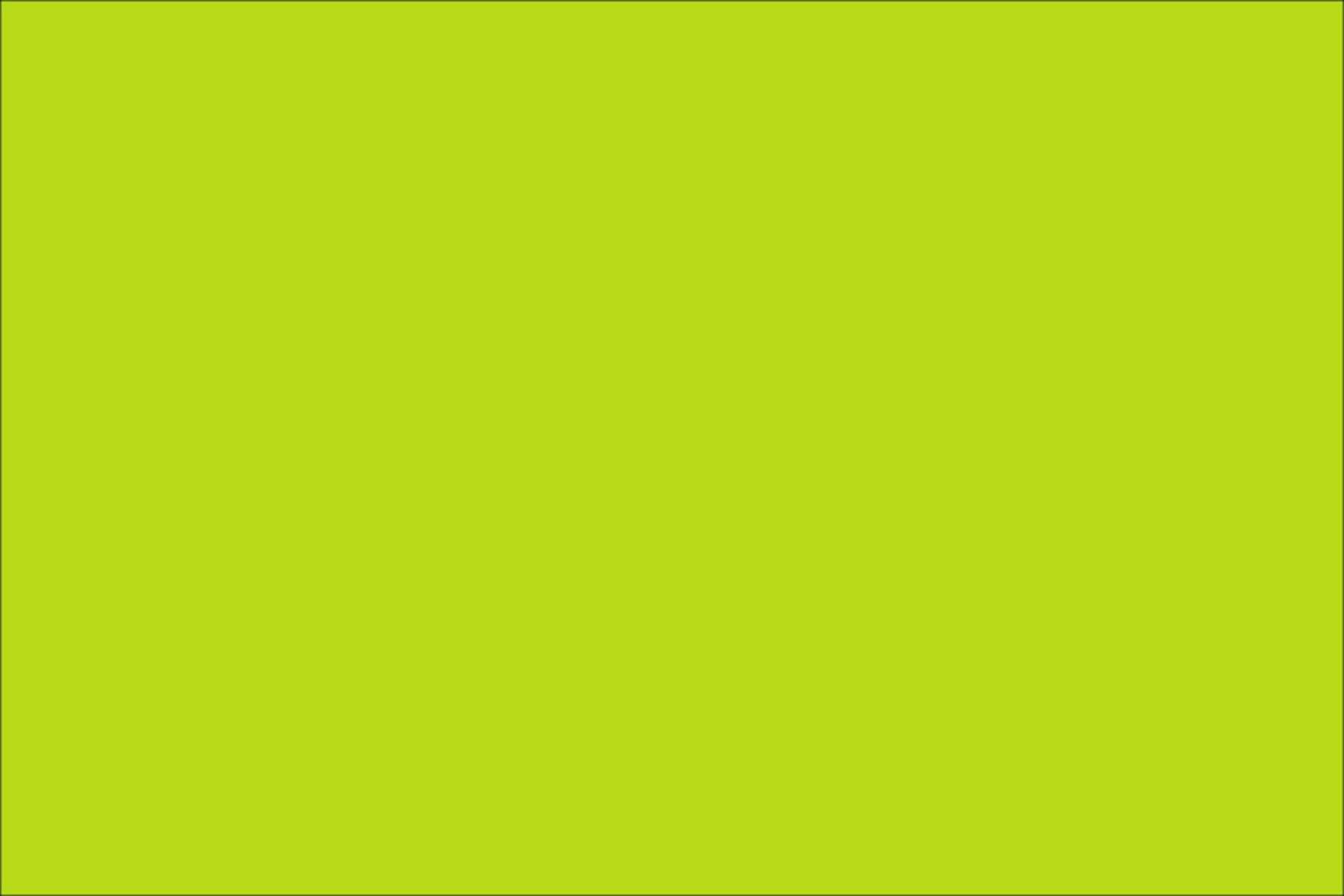 Lime Green Best Cool Funny