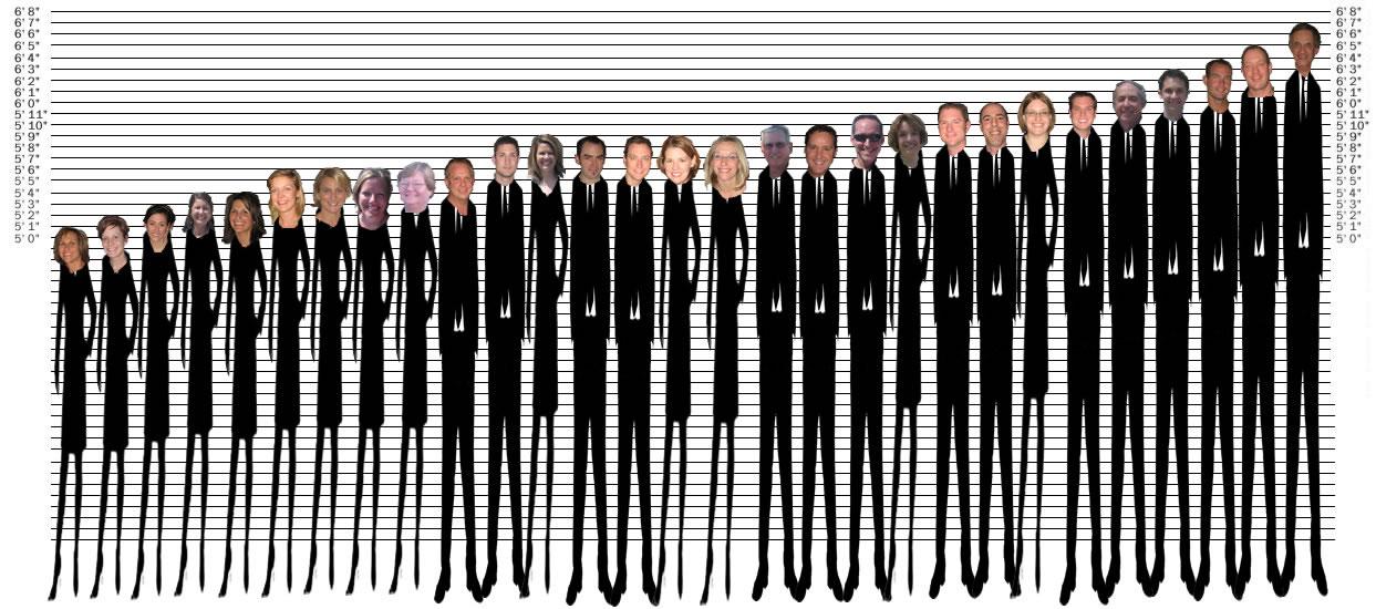Height Chart People | www.pixshark.com - 182.1KB