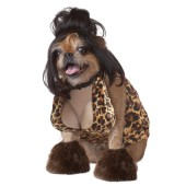 The Lady Is a Tramp Pet Costume