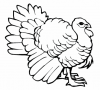thanksgiving-coloring-pages3.png